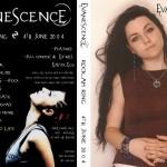 EvanescenceRockamRing4thJune2004
